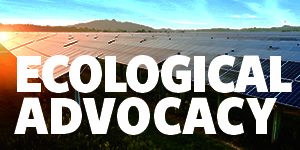 Ecological advocacy