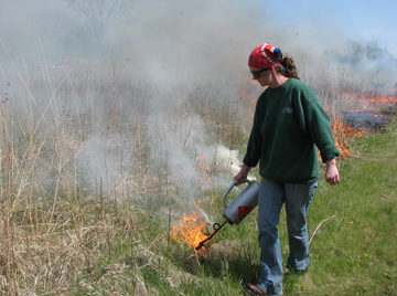 Prairie restoration at Prairiewoods Spirituality Center