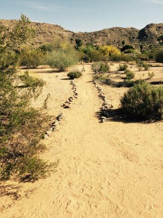 desert-trail-by-sister-amy-taylor