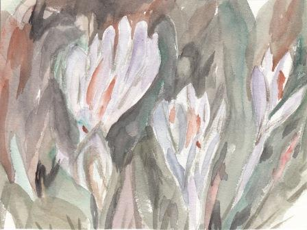 watercolor-crocuses-by-S-Rita-Mae-Fischer