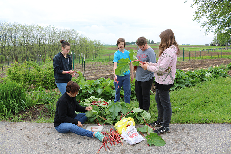 longfellow students and teacher in organic garden at Villa St. Joseph