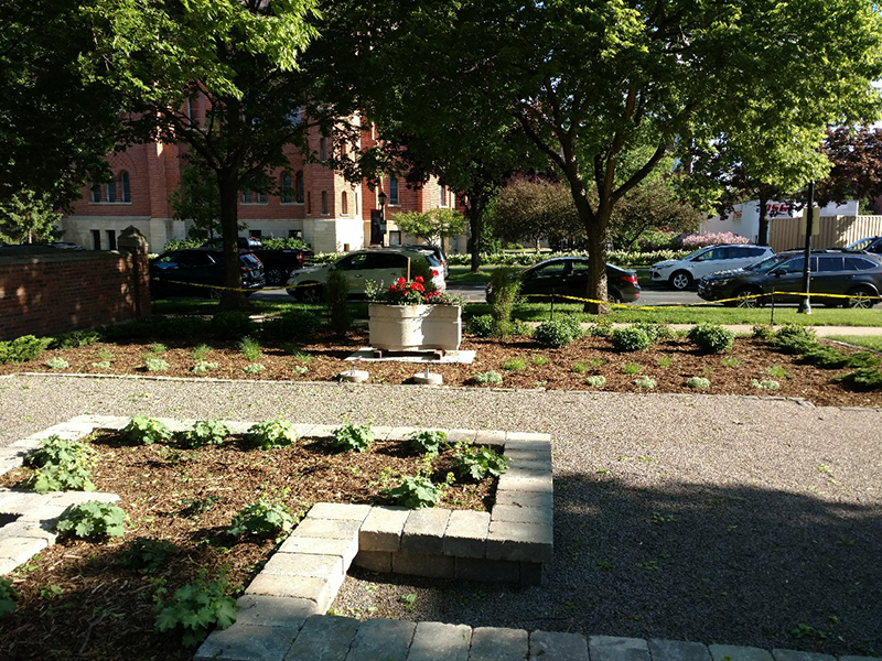 Portion of garden dedicated to Sister Genny Morrissey