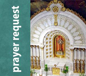 Franciscan Sisters of Perpetual Adoration (FSPA)